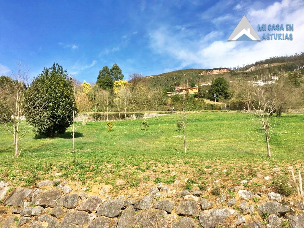 Se Vende Parcela En La Zona De Fitoria, En Oviedo.